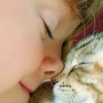 Нужен ли вашему малышу домашний любимец?