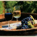 Виноделие. Романтичное хобби