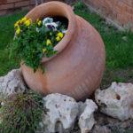Миниальпинарий для вашего сада